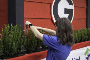 "Habitat outreach director Bridget Sivewright trims ""hedges"" around the float"