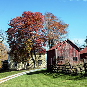 House and barn in autumn