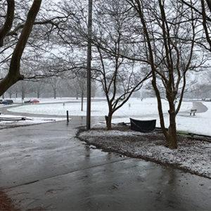 Snow at the Sandy Creek Park disc golf course