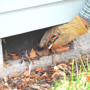 Gloved hand clearing leaf debris from a home's foundation vent